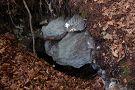 Koreňová jaskyňa