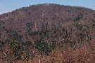 Južná strana vrchu Škaredé