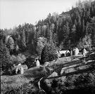 Horská obec Baranie. Vľavo usadlosť Juraja Blaščaka, vpravo Štefana Blaščaka.