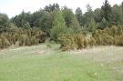 Vstup do lesa od Kyjova