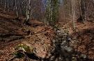 Táborový potok