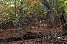 Národná prírodná rezervácia Pramenisko Tople