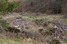 Zaniknutý dom v osade Ambrušovce