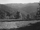 Pohľad na vrch Solisko a Škaredé