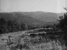 Vľavo vrch Hrašovík, za ním Solisko. Vpravo Veľká Javorina a Škaredé. Dole sedlo Priehyby.