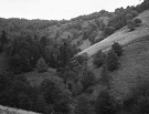 Lúky nad Ambrušovcami