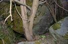 Hubová jaskyňa