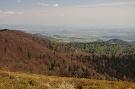 Šarišský hradný vrch