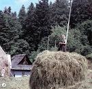 Usadlosť Štefana Blaščáka, osada Baranie