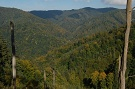 Pohľad do doliny potoka Tokáreň